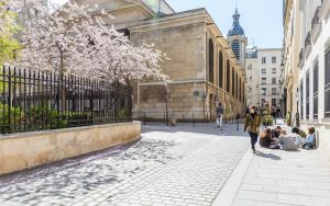 00019-luxe-apartmentsrentals-PARIS-MANSION-APARTMENT-WITH-GARDEN-NEAR-OPERA