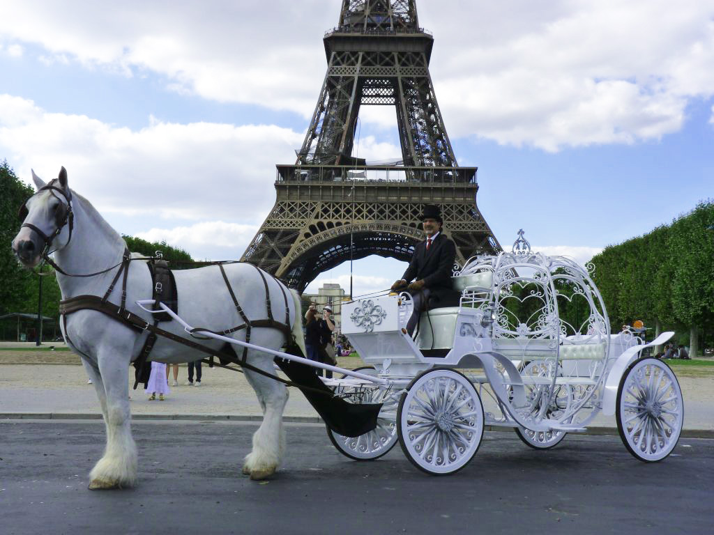 horse carriage ride tour